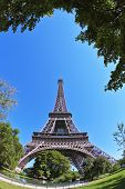 The most famous in the world - the Eiffel Tower in the background of bright blue sky. At the foot of