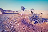 stock photo of samaria  - Big Stones in Sand Hills of Samaria Instagram Effect - JPG