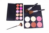 Professional Eyeshadows And Corrector With Brushes