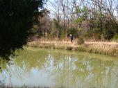 Walking around the pond.