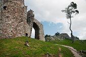 Ruin Of Castle Hrusov And Lone Tree