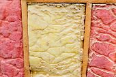 Carpenter Ant Nest Pest Glasswool Isolation Damage