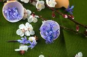 Eggshell Filled With Blue Flowers