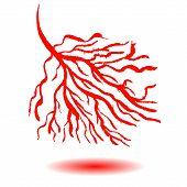 Blood vessels concept.