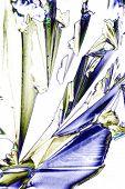 Mikrokristalle Der Weinsäure Im Polarisiertem Licht