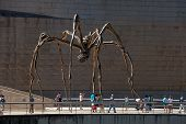 BILBAO, SPAIN - SEPT 3 2014 : Bourgeois's Maman sculpture sits in wait outside the Guggenheim