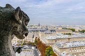 image of gargoyles  - A gargoyle observes the streets of Paris - JPG