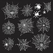 stock photo of spiderwebs  - Set of 10 different spiderwebs and spiders on black background - JPG