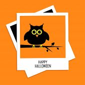 Instant Photo With Owl. Happy Halloween Card. Flat Design.