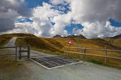 Cattle Guard In The Tirol Mountains,austria
