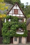 Overgrown old half-timbered house