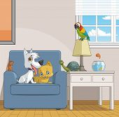 Pets In Home