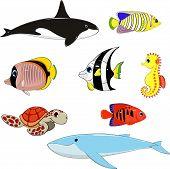 Set of marine animals