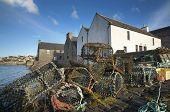 Basket For Crabs In St Margareth Hope. Orkney. Scotland
