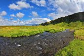 Warm summer days in Iceland. Green meadows and streams of meltwater