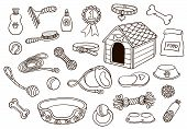 Set Of Accessories For Dogs