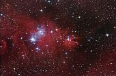 "Nebular Complex In Monoceros Constellation. ""cone"" And ""fox Fur""."