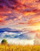 Fantastic sunny hills under morning cloudy sky. Dramatic overcast sky. Carpathian, Ukraine, Europe. Beauty world.