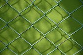 Wire fence and green background