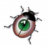 Bug with green eye print on shell