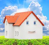 New house with smiley face. Happy living concept.
