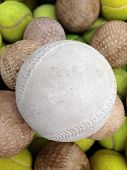 picture of softball  - Softball with Tennis ball put in basket - JPG
