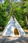picture of wigwams  - A Native American teepee in a wooded clearing - JPG