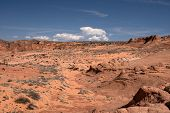 pic of wilder  - Edmaiers Secret are fields of socalled Brainrocks they are located at Vermilion Cliffs Wilderness Utah USA - JPG