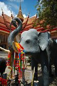 Elephant At Temple, Phuket, Thailand