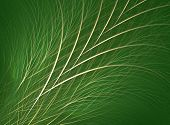 stock photo of fescue  - fractal rendering resembling blades of grass or fescue - JPG