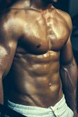 Muscular Male Wet Torso poster