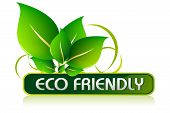 picture of environmentally friendly  - illustration of icon for eco friendly on isolated white background - JPG