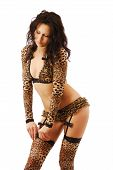 Woman In Leopard Lingerie.