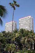 Tropical Hotels