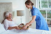 Smiling nurse giving food to senior woman at home poster