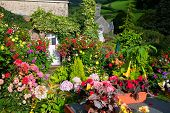 Colourful flowers decorate the Devon village of Branscombe