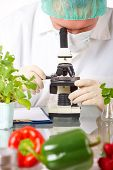 Researcher With Gmo Vegetable In The Laboratory