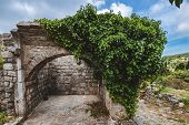Ancient Stone Ruins And Ivy Wall Archway At Old Bar Town On Montenegro. Stari Bar - Ruined Medieval  poster