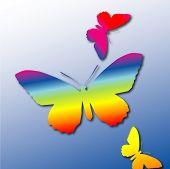 Spectrum Butterflies
