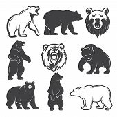 Monochrome Illustrations Of Stylized Bears. Pictures Set For Logos Or Badges Design. Vector Bear Ani poster