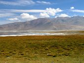 Ladakh River Landscape