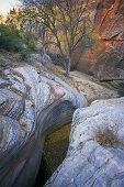 Fall Foliage & Slot Canyon