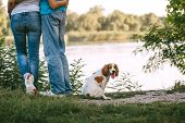 A Pair Of Lovers In Jeans Hugs On The River Bank On A Sunny Day, Next To A Dog poster