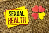 Word Writing Text Sexual Health. Business Concept For Std Prevention Use Protection Healthy Habits S poster