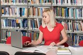 Female Student Typing On Laptop In The University Library poster