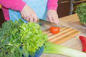 Woman Hands Cutting Vegetables On Kitchen Blackboard. Healthy Food. Woman Preparing Vegetables, Cook poster