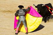 stock photo of animal cruelty  - Torero and bull in bullfight - JPG