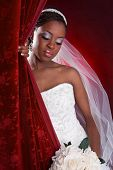 Beautiful African American Bridal Portrait on Red Dark Background