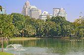 Bangkok Park And Metropolis