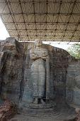 Ancient Standing Buddha Image, Gal Vihara, Polonnaruwa, Sri Lanka